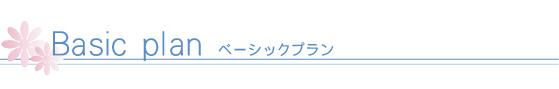 menu_basic_title