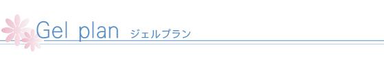 menu_gel_title3
